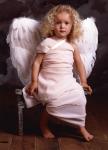 ka_003_angelwings001