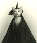 carmel_Halloween006
